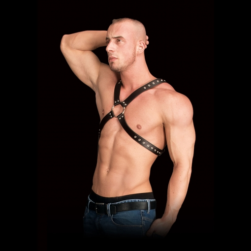 Ouch - Adonis Harness