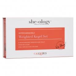 She-Ology - Interchangeable Kegel Set